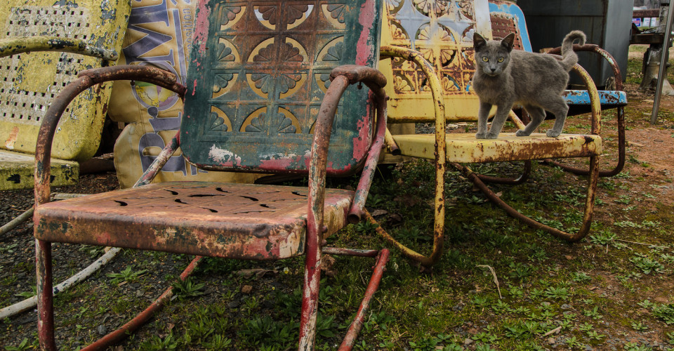 Rusted Metal Chairs